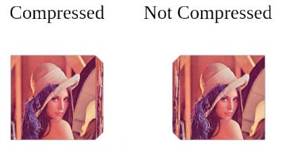 compressedTextures